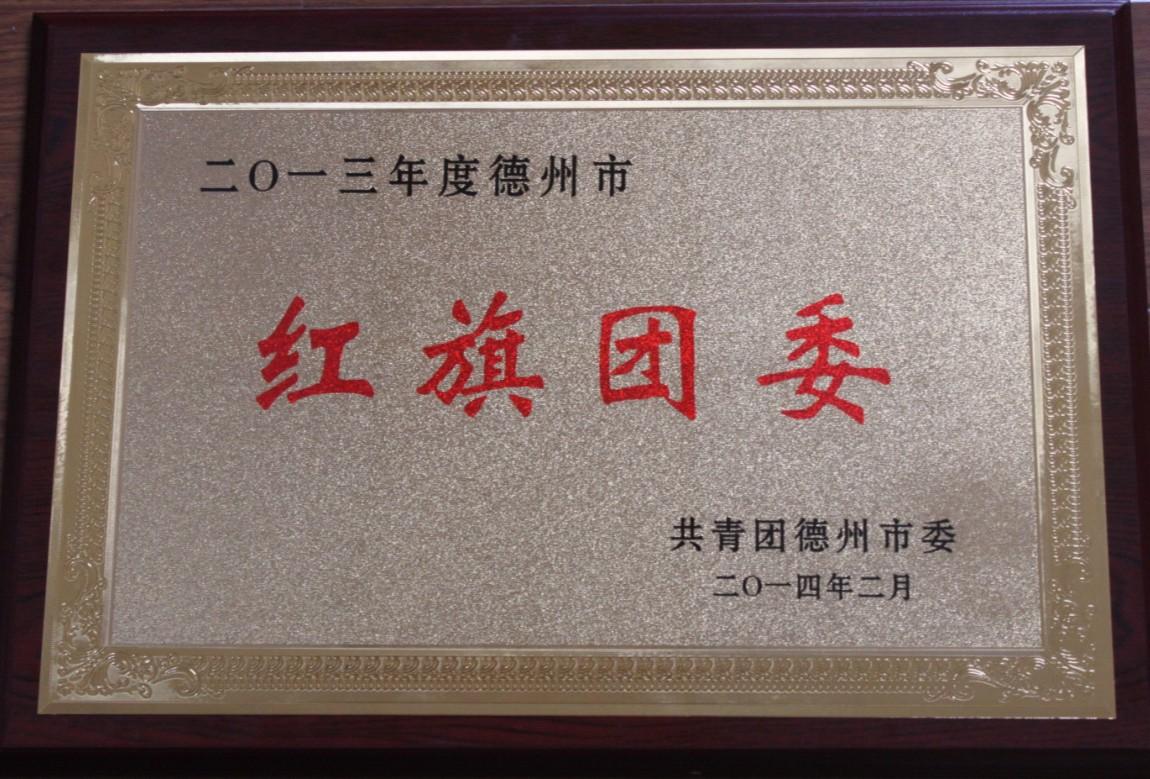 2013年优德888官网官方网站市红旗团委